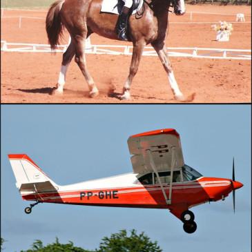 E se a aviação fosse montaria?