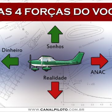 As 4 forças do voo