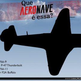 Que Aeronave é Essa? (XXXIV)