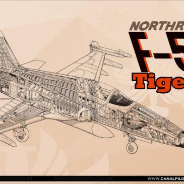 Acfts que Marcaram Época: F-5E