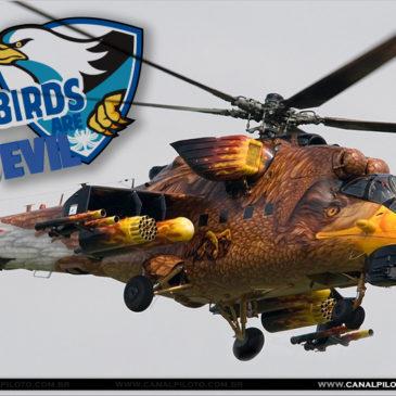Bird very evil